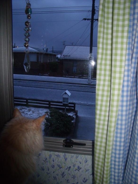 Snow2May14