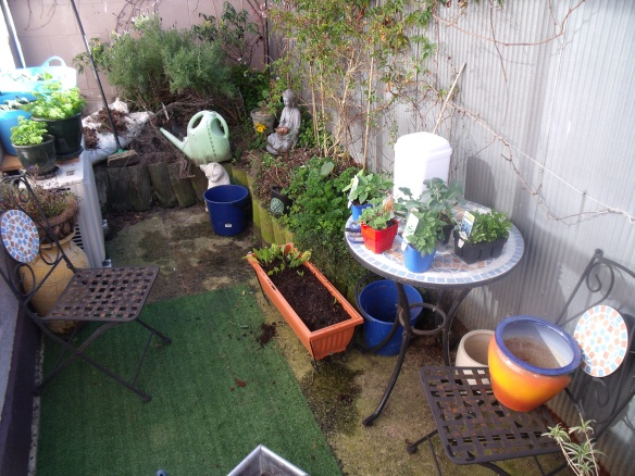 Garden3 sept 14