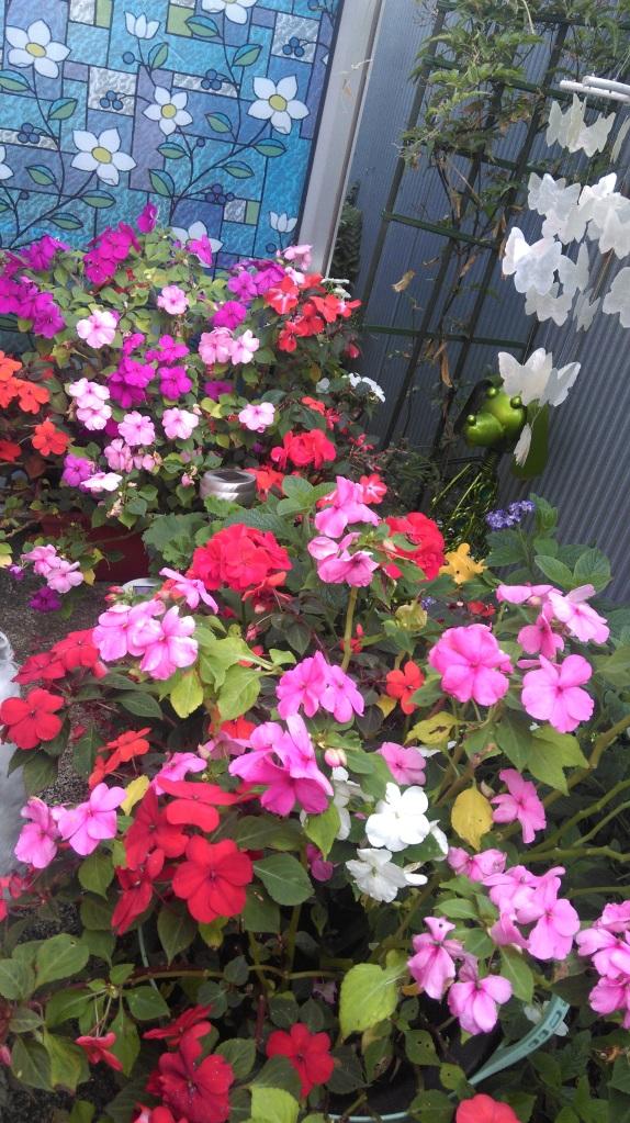 Entry Garden April 16