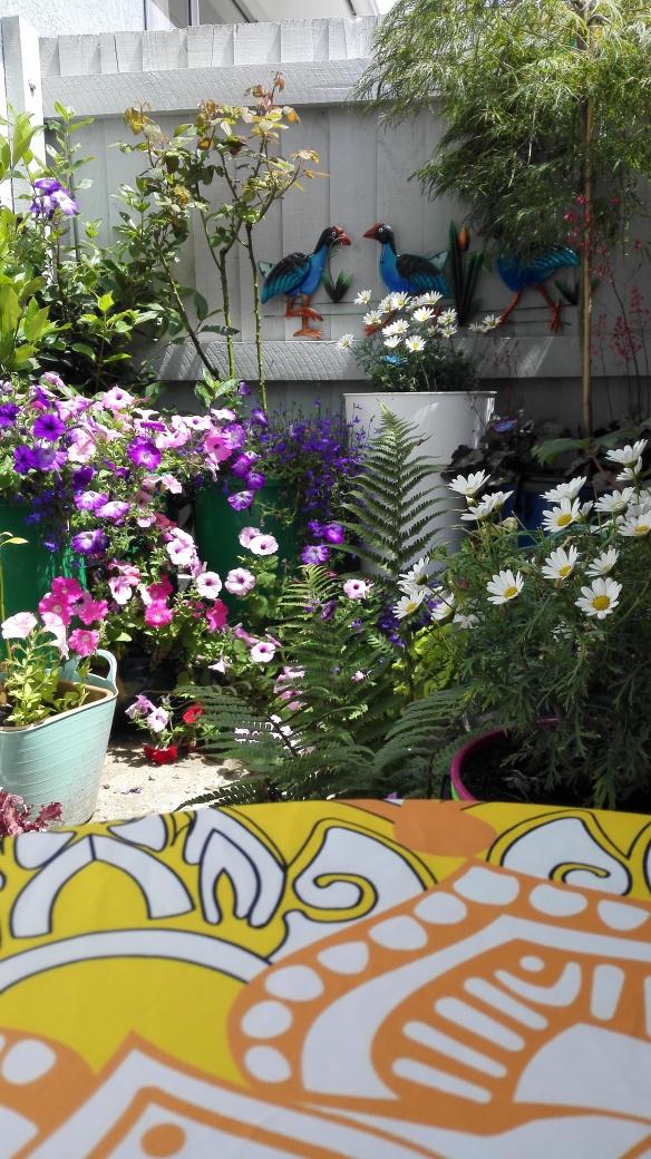 garden 3 Jan 18